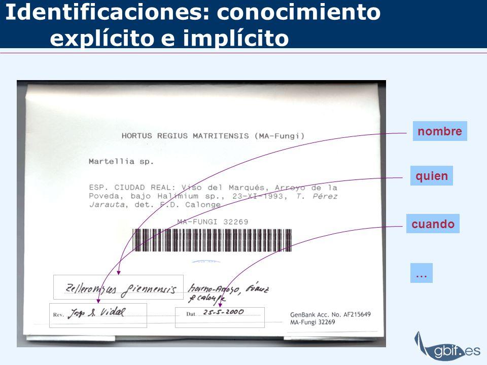 Identificaciones: conocimiento explícito e implícito