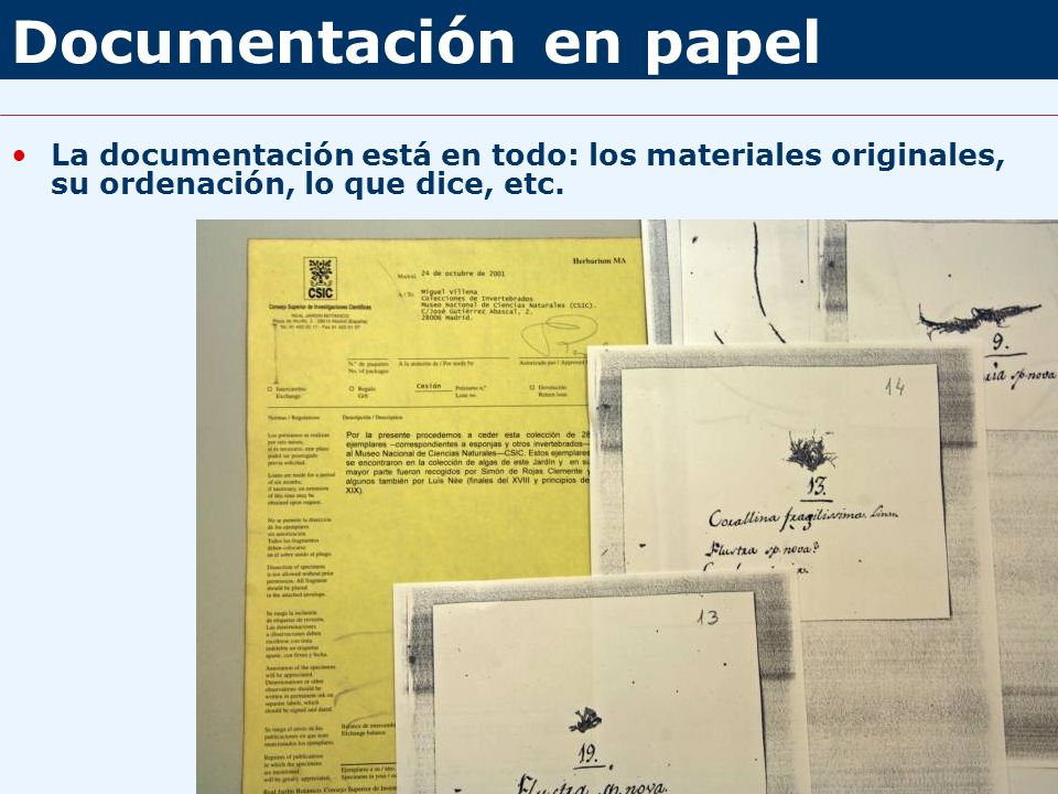 Documentación en papel