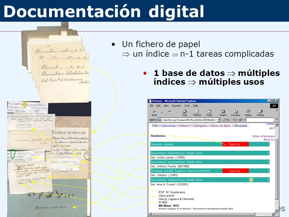 Documentación digital