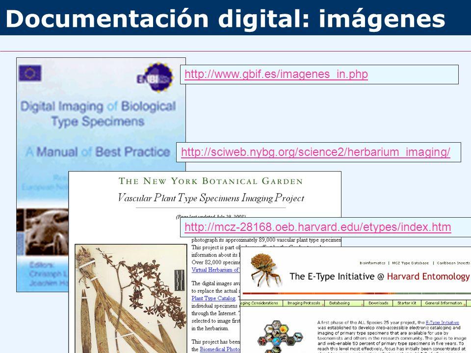 Documentación digital: imágenes