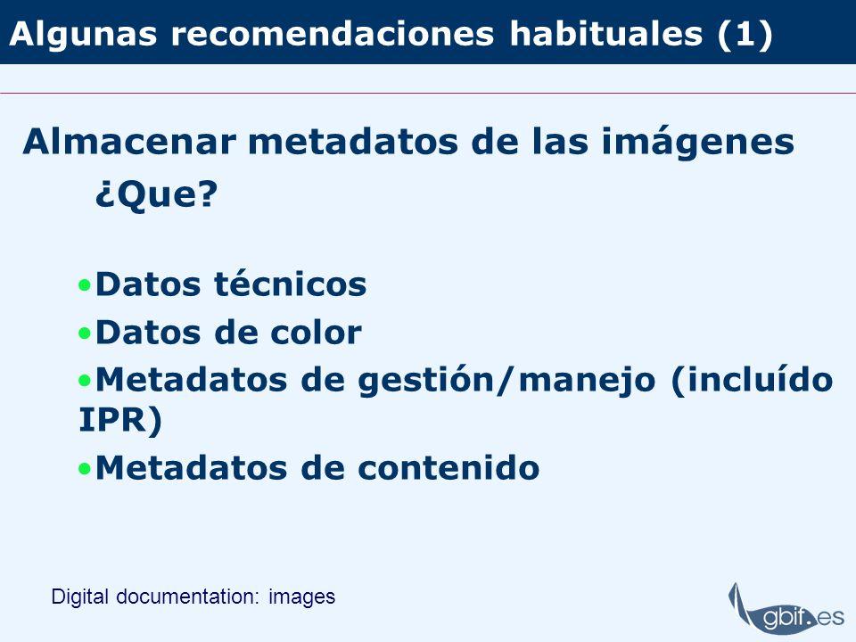 Algunas recomendaciones habituales (1)