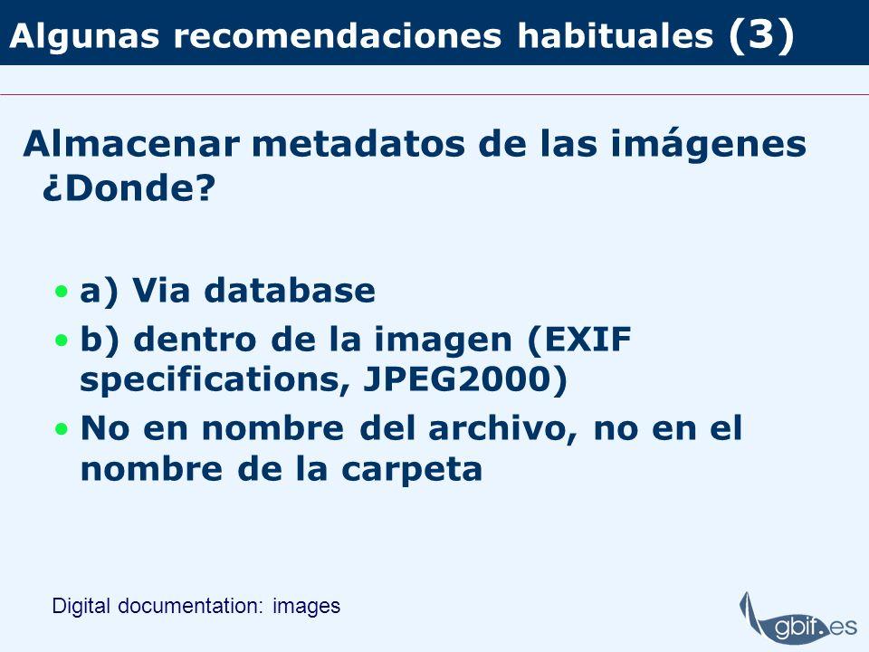Algunas recomendaciones habituales (3)