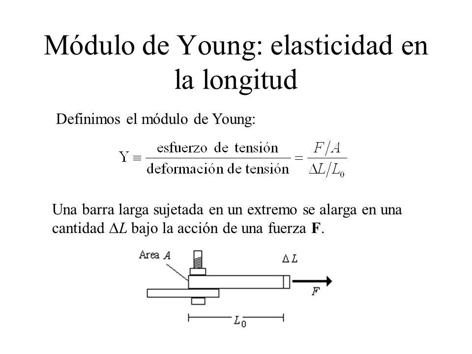 Módulo de Young: elasticidad en la longitud