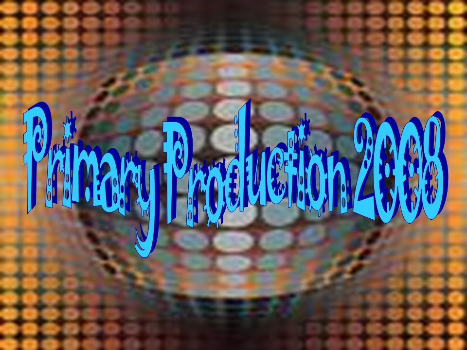 Primary Production 2008