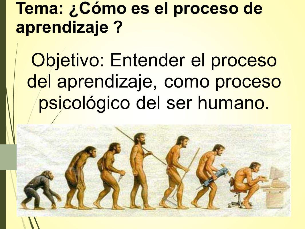 Tema: ¿Cómo es el proceso de aprendizaje