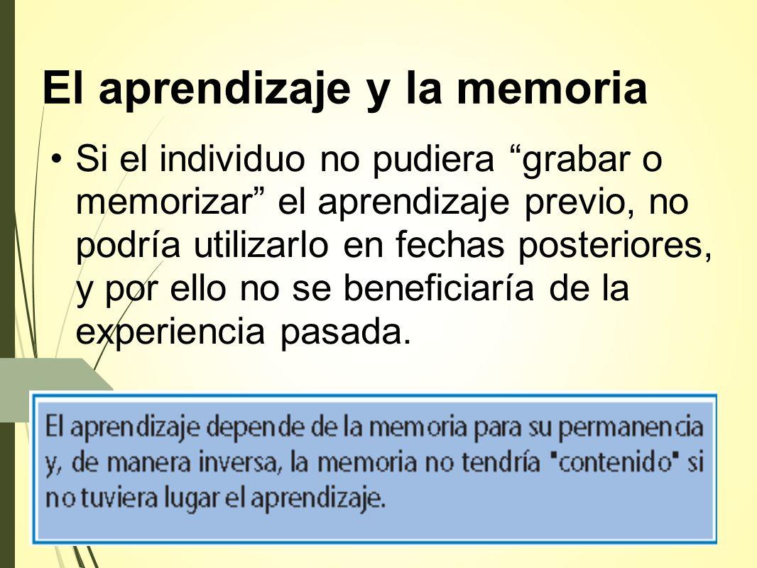 El aprendizaje y la memoria