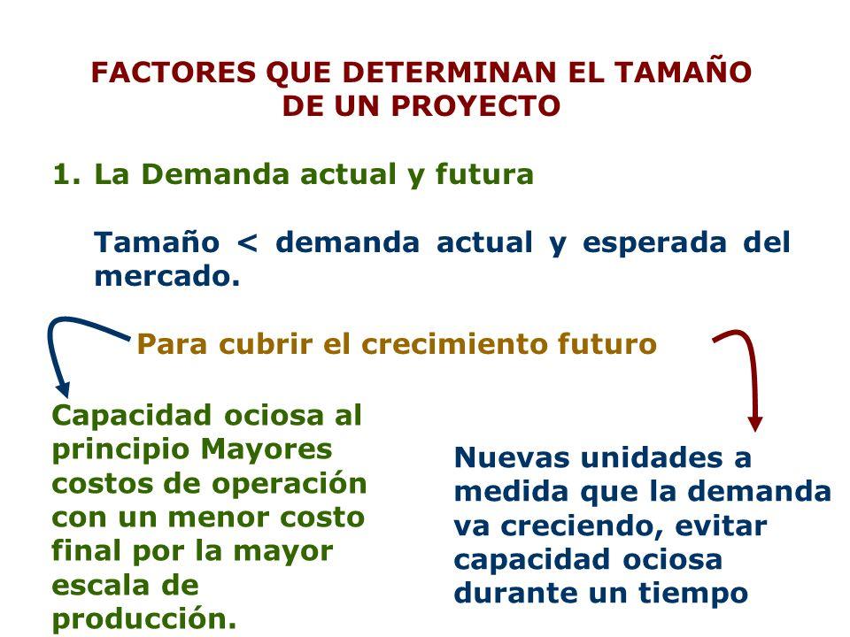 FACTORES QUE DETERMINAN EL TAMAÑO
