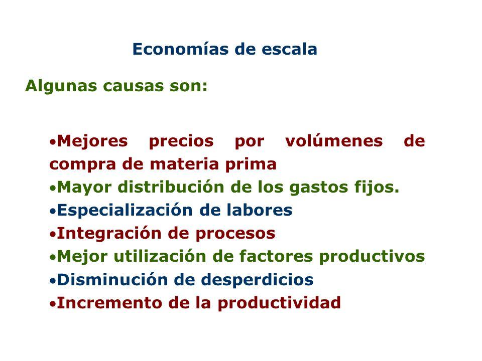 Economías de escala Algunas causas son: Mejores precios por volúmenes de compra de materia prima. Mayor distribución de los gastos fijos.