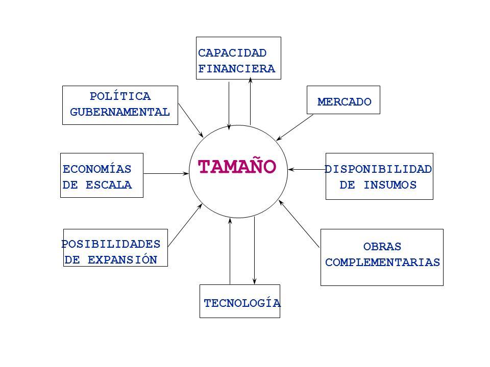 TAMAÑO CAPACIDAD FINANCIERA POLÍTICA GUBERNAMENTAL MERCADO ECONOMÍAS