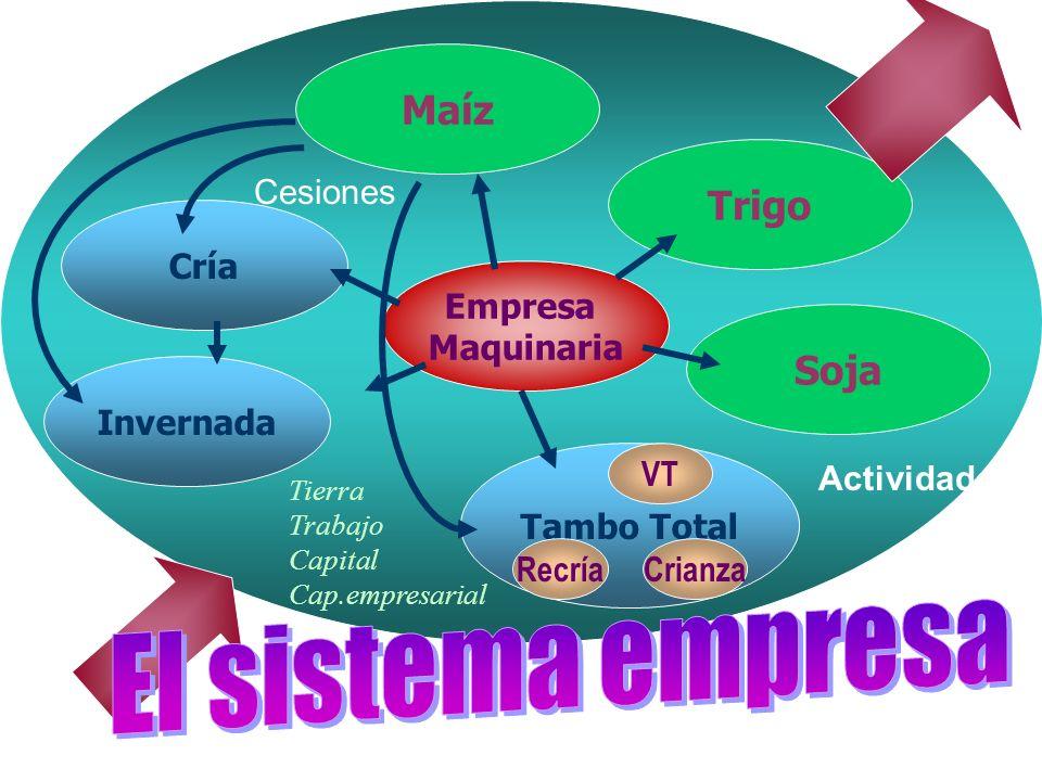El sistema empresa Maíz Trigo Soja Cría Invernada Tambo Total Empresa