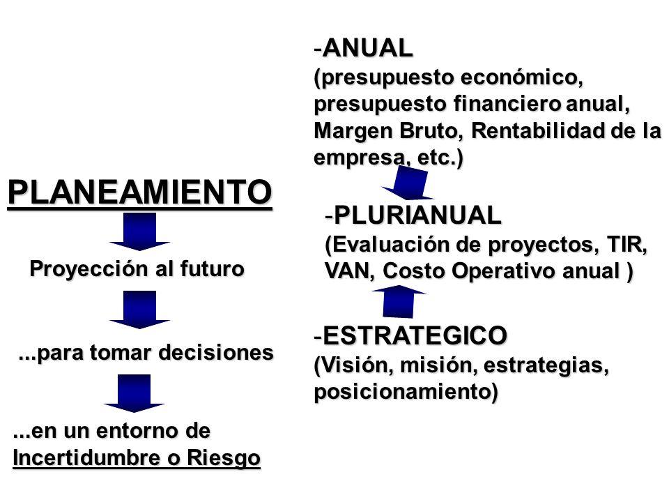 ANUAL (presupuesto económico, presupuesto financiero anual, Margen Bruto, Rentabilidad de la empresa, etc.)
