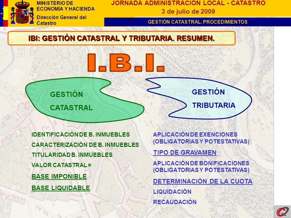 IBI: GESTIÓN CATASTRAL Y TRIBUTARIA. RESUMEN.