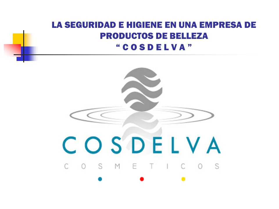 LA SEGURIDAD E HIGIENE EN UNA EMPRESA DE PRODUCTOS DE BELLEZA C O S D E L V A