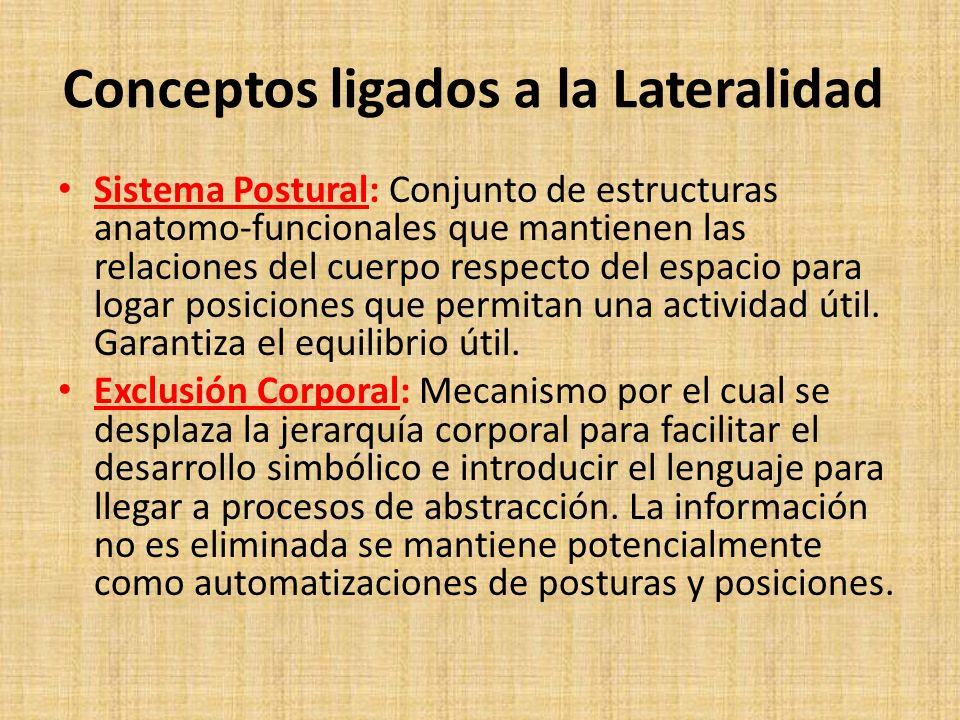 Conceptos ligados a la Lateralidad