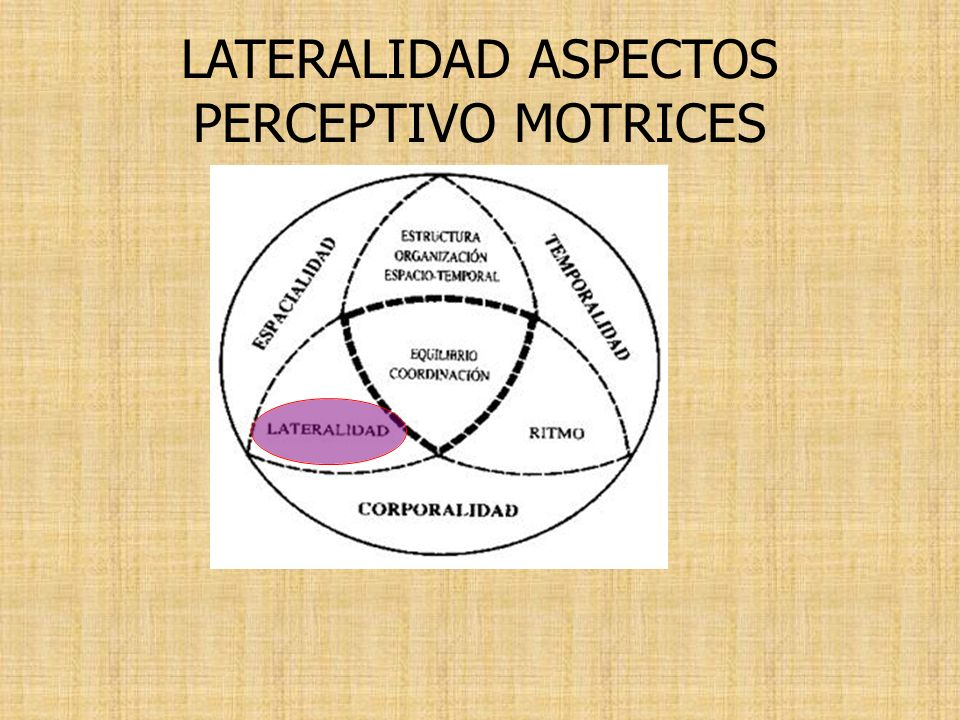 LATERALIDAD ASPECTOS PERCEPTIVO MOTRICES