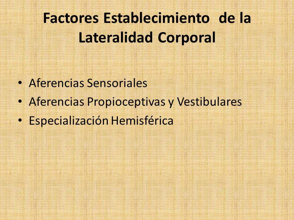 Factores Establecimiento de la Lateralidad Corporal