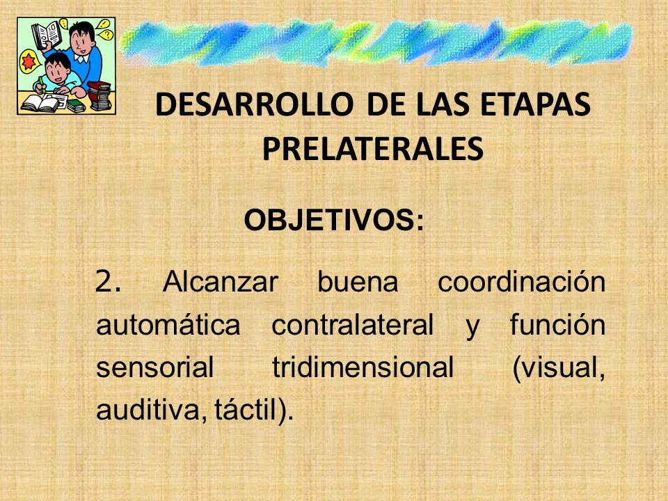 DESARROLLO DE LAS ETAPAS PRELATERALES