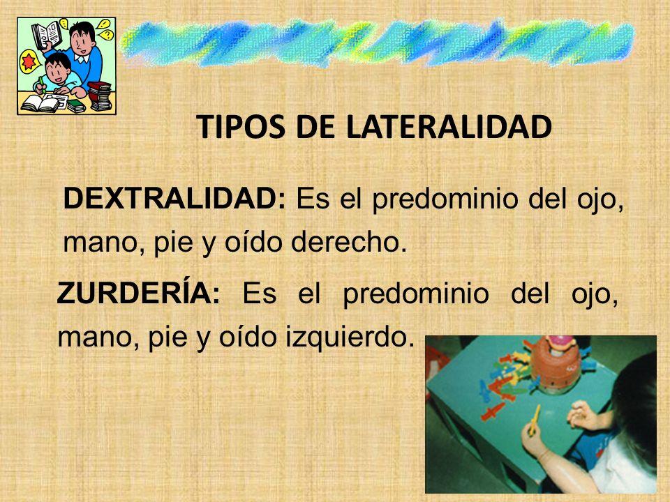 TIPOS DE LATERALIDAD DEXTRALIDAD: Es el predominio del ojo, mano, pie y oído derecho.