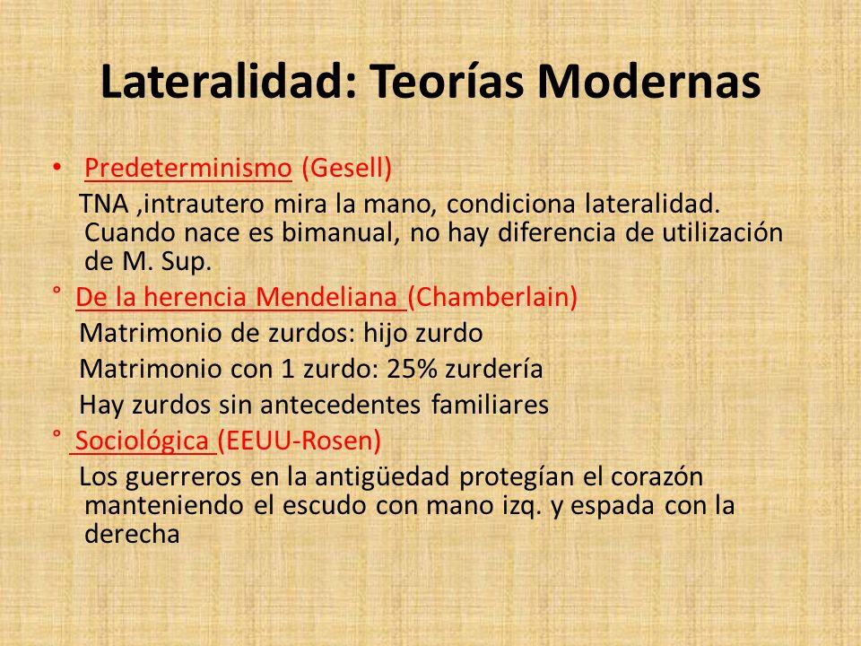 Lateralidad: Teorías Modernas