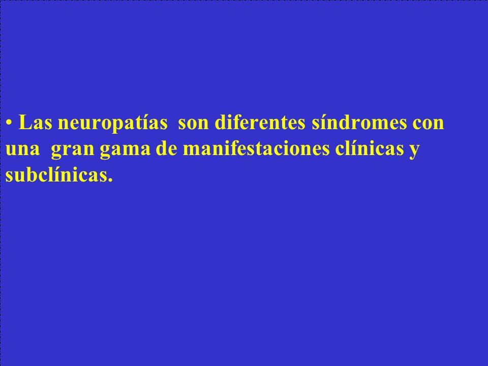 • Las neuropatías son diferentes síndromes con una gran gama de manifestaciones clínicas y subclínicas.