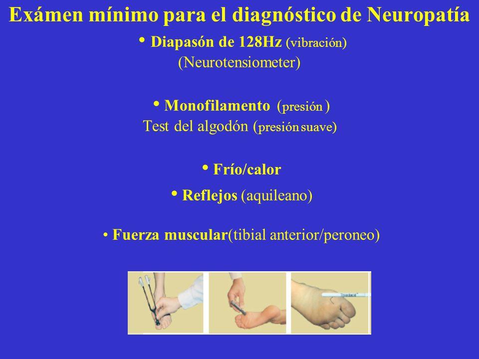 Exámen mínimo para el diagnóstico de Neuropatía • Diapasón de 128Hz (vibración) (Neurotensiometer) • Monofilamento (presión ) Test del algodón (presión suave) • Frío/calor • Reflejos (aquileano) • Fuerza muscular(tibial anterior/peroneo)
