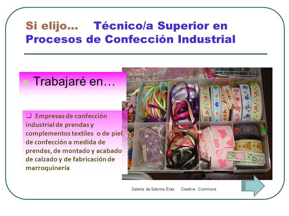 Si elijo… Técnico/a Superior en Procesos de Confección Industrial