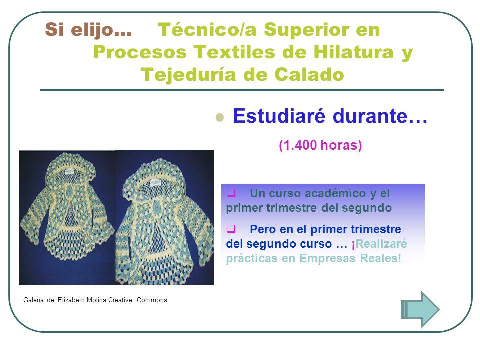 Si elijo… Técnico/a Superior en. Procesos Textiles de Hilatura y