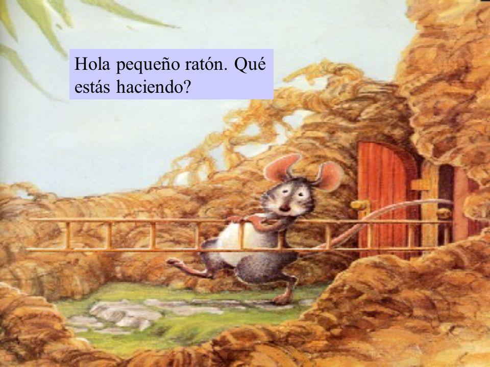 Hola pequeño ratón. Qué estás haciendo