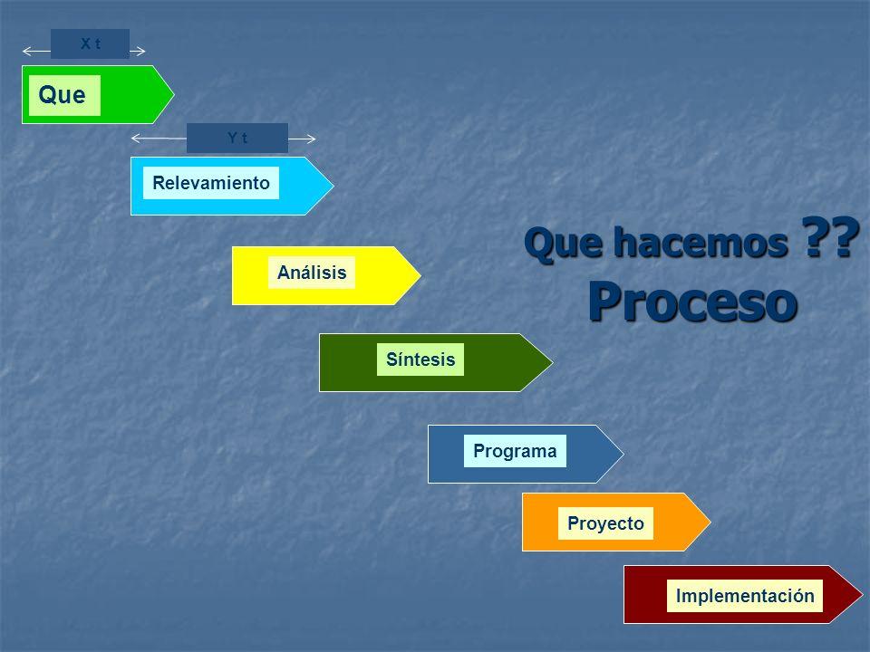 Que hacemos Proceso Que Relevamiento Análisis Síntesis Programa