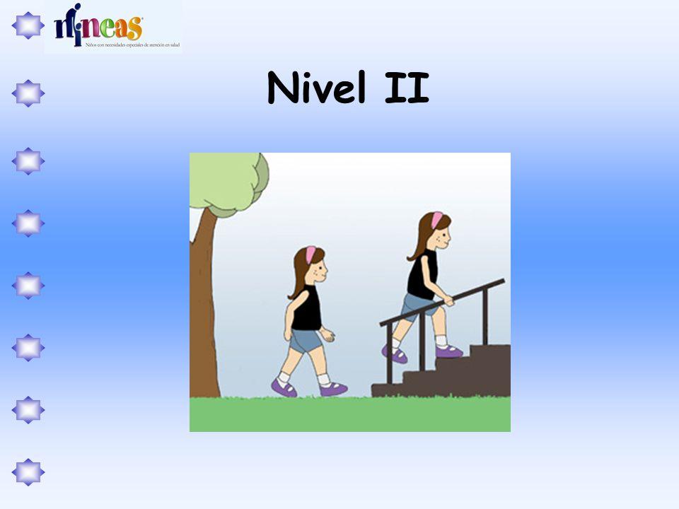 Nivel II