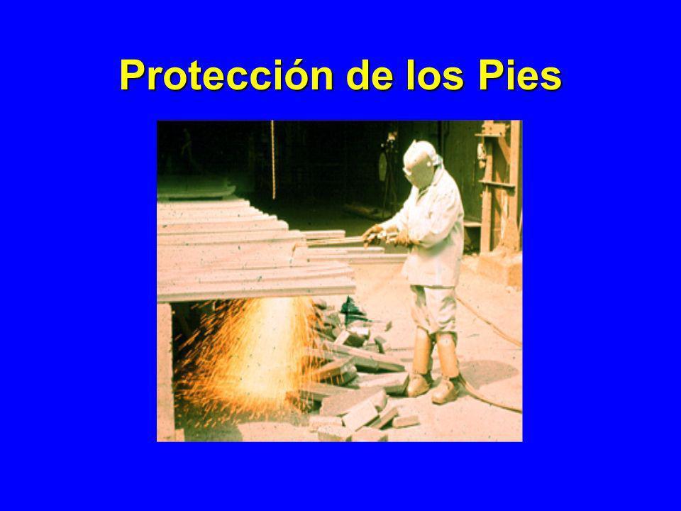 Protección de los Pies 1926.96