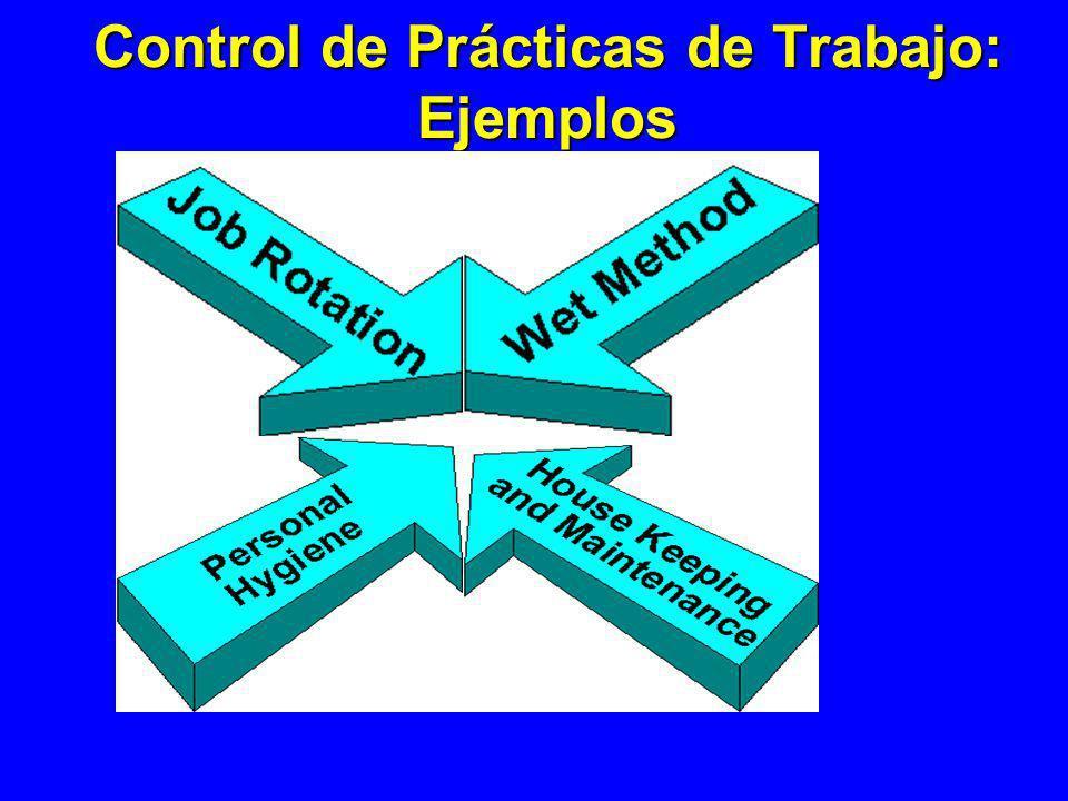 Control de Prácticas de Trabajo: Ejemplos
