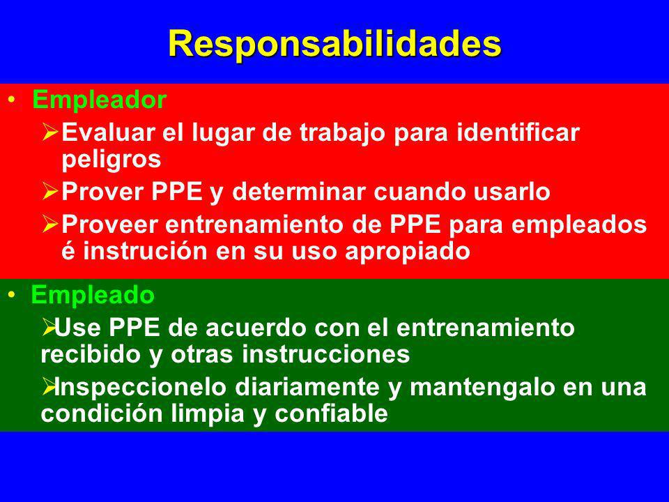 Responsabilidades Empleador