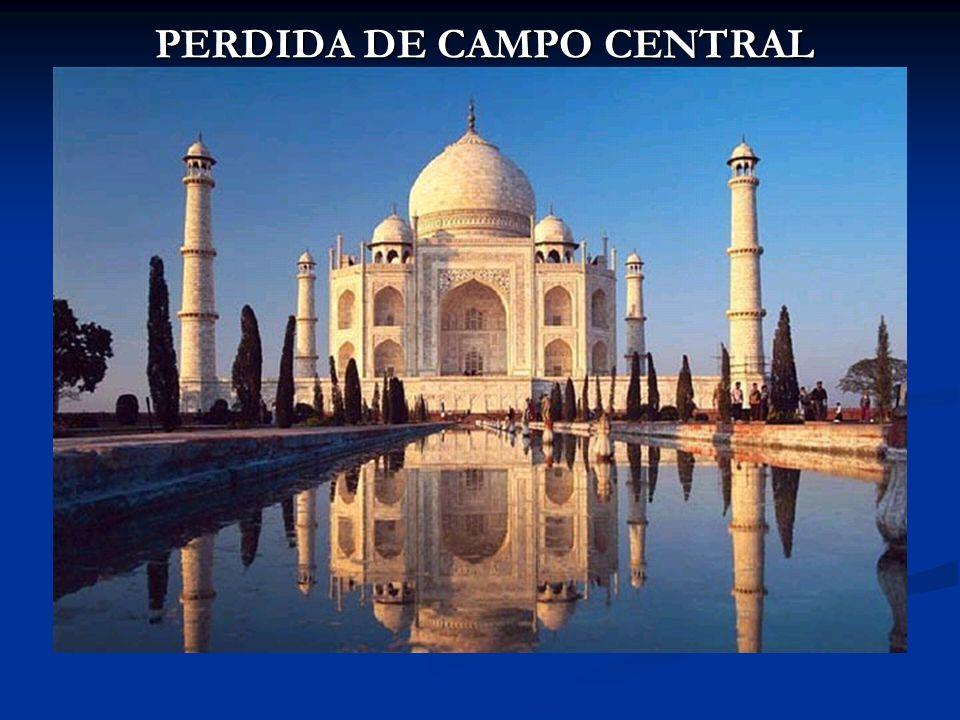 PERDIDA DE CAMPO CENTRAL