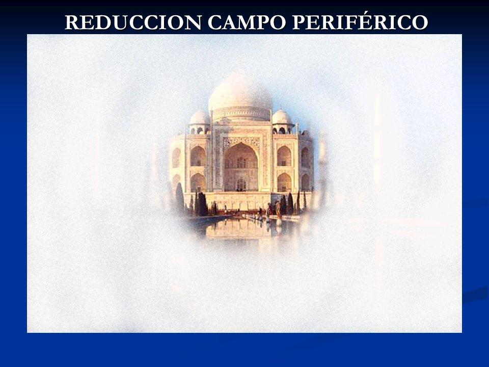 REDUCCION CAMPO PERIFÉRICO