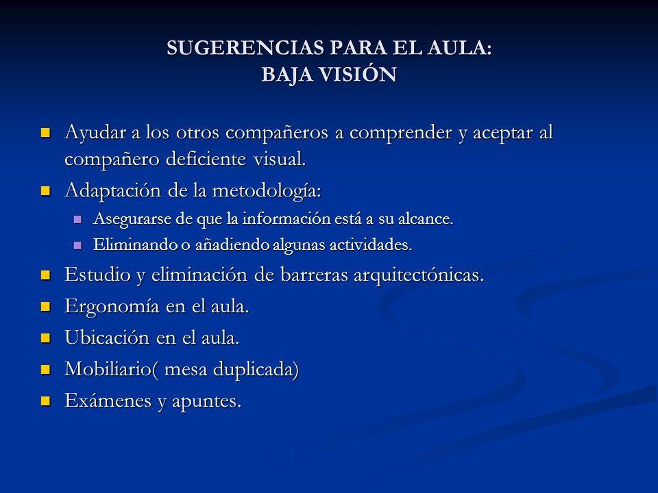 SUGERENCIAS PARA EL AULA: BAJA VISIÓN