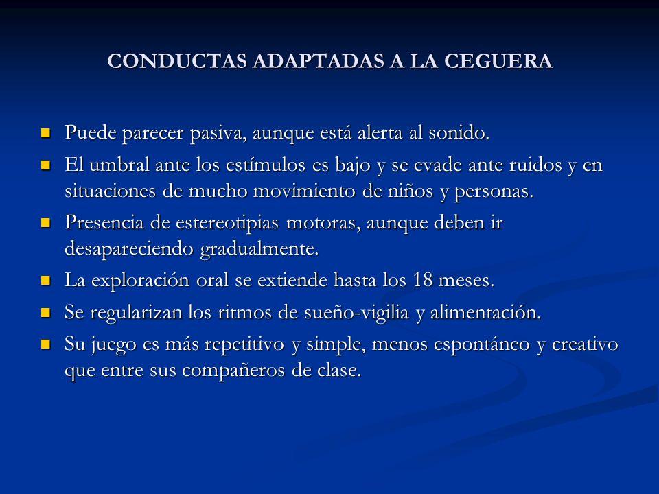 CONDUCTAS ADAPTADAS A LA CEGUERA