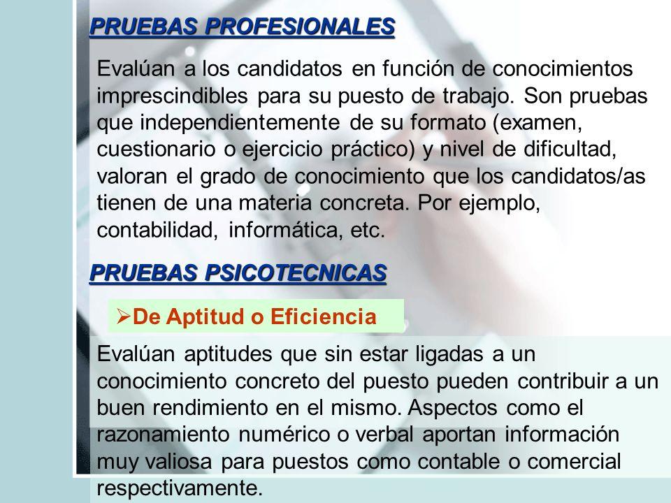 PRUEBAS PROFESIONALES
