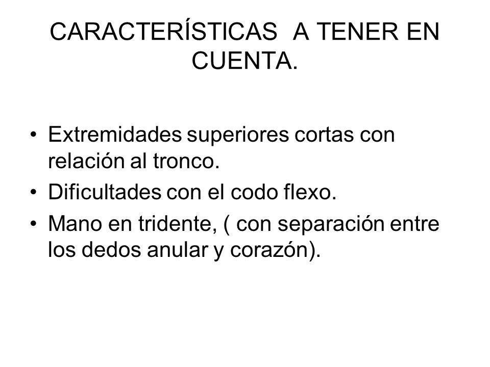 CARACTERÍSTICAS A TENER EN CUENTA.