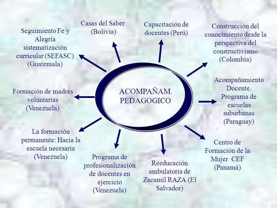ACOMPAÑAM. PEDAGOGICO Casas del Saber Capacitación de docentes (Perú)