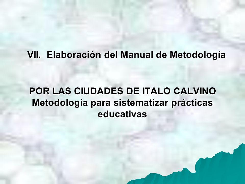 VII. Elaboración del Manual de Metodología