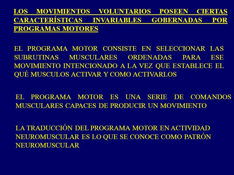 LOS MOVIMIENTOS VOLUNTARIOS POSEEN CIERTAS CARACTERÍSTICAS INVARIABLES GOBERNADAS POR PROGRAMAS MOTORES