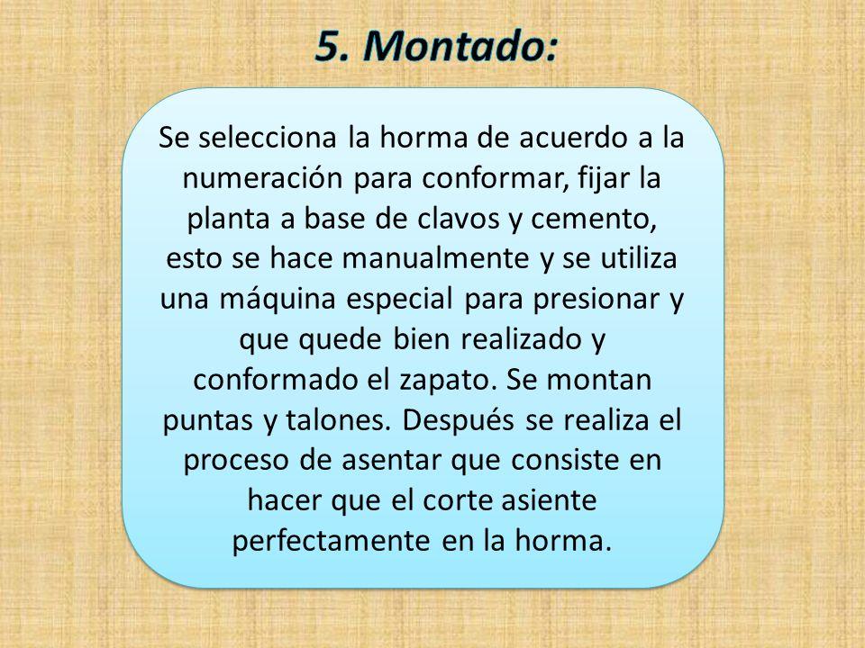 5. Montado: