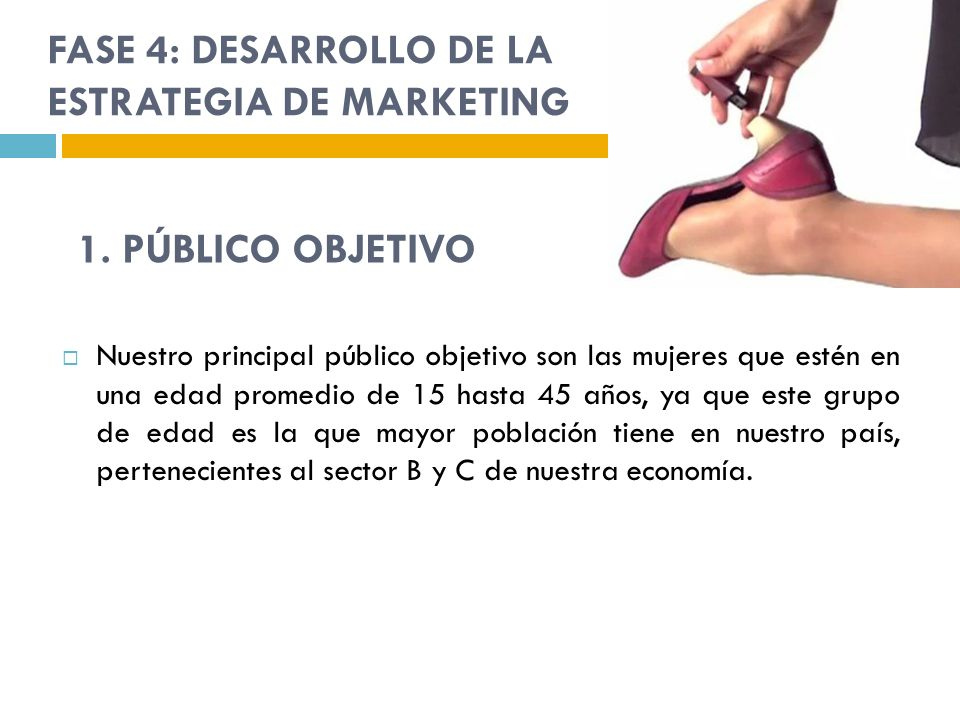 FASE 4: DESARROLLO DE LA ESTRATEGIA DE MARKETING
