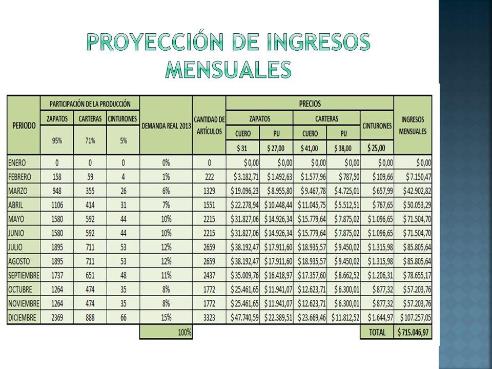 PROYECCIÓN DE INGRESOS MENSUALES