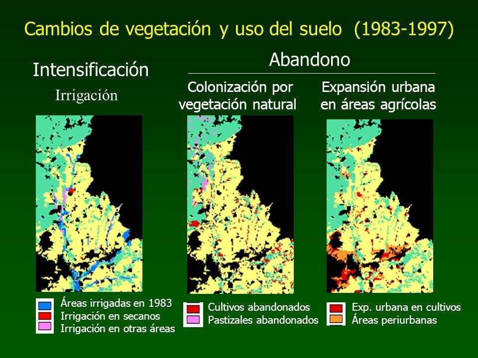 Cambios de vegetación y uso del suelo (1983-1997)