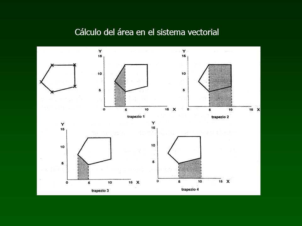 Cálculo del área en el sistema vectorial