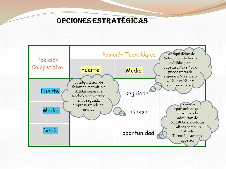 OPCIONES ESTRATÉGICAS