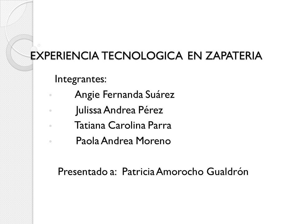 EXPERIENCIA TECNOLOGICA EN ZAPATERIA