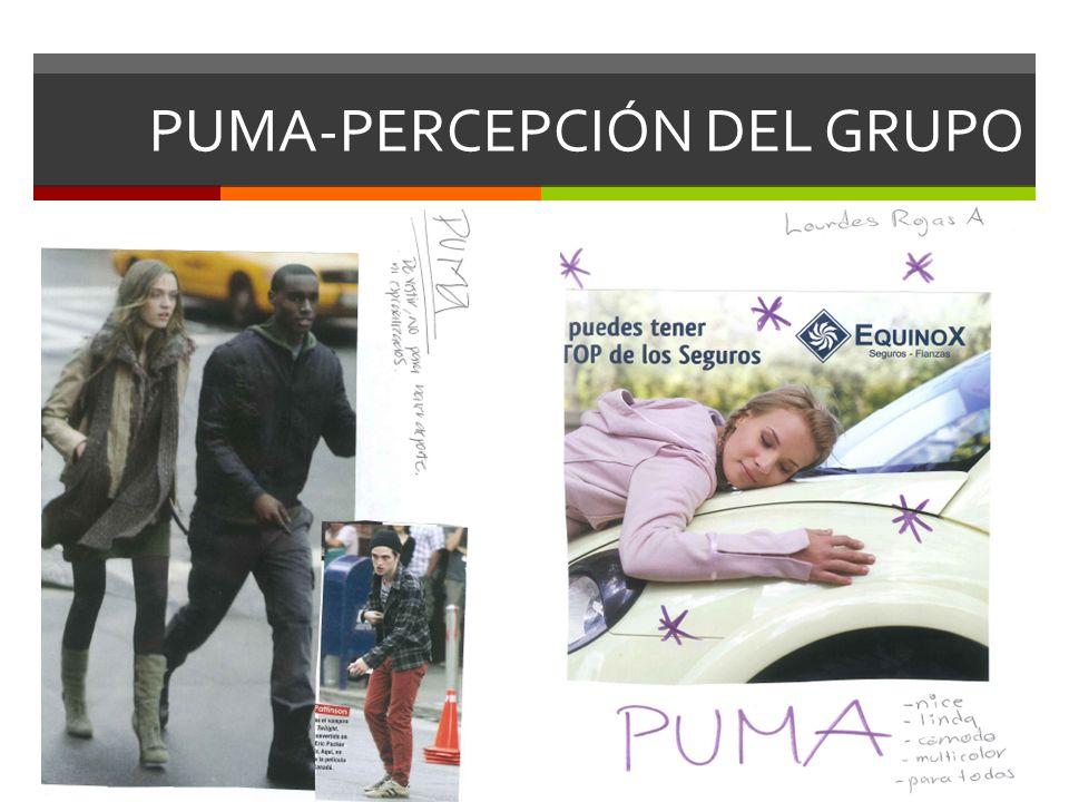 PUMA-PERCEPCIÓN DEL GRUPO